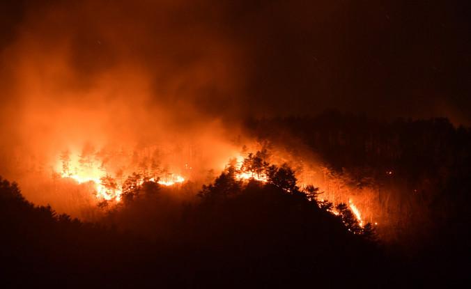 炎を上げて燃え続ける原地山の山林火災現場=12日午後8時8分、宮古市田老