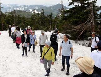 残雪や周りの風景を楽しみながら八幡平山頂を目指す「魅ステリーツアー」の一行