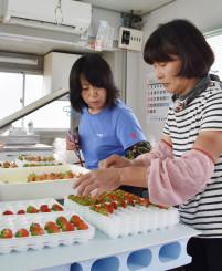 宮古市内でイチゴを選果する「いちご農園夏いちご」のスタッフ。16日から急行バスで盛岡に出荷する=12日