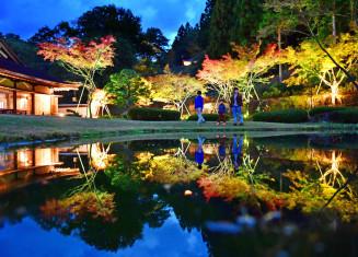 夕闇の中、色づき始めた紅葉がライトアップされ、水鏡の世界をつくり出す=20日午後5時15分、奥州市江刺岩谷堂・歴史公園えさし藤原の郷