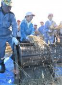 脱穀作業 力をコメて 八幡平・寺田小児童、昔の農具使い体験