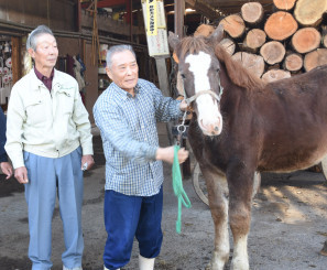 チャグチャグ馬コ保存会から子馬の引き渡しを受けた大坪昇さん(中央)。左は村松武志チャグチャグ馬コ同好会長