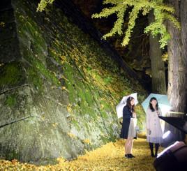 ライトアップされ、闇夜に浮かび上がった岩手公園の石垣