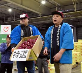今年も特選28個に130万円の最高値が付いた江刺りんごの初競り