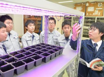⑥福島県福島市 福島工の野菜栽培用LED照明製作