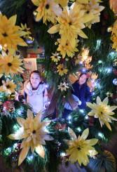 まばゆい電飾が夕闇の街を照らすシンボルリース=26日、盛岡市中ノ橋通・プラザおでって前