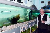 第7部 世界の挑戦 ③野生魚とふ化場魚
