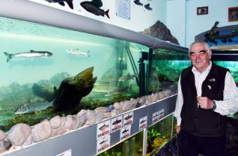 サケの幼魚などが飼育された水槽の前で野生魚の強さについて語るセルゲイ・ゾルツヒン研究顧問=太平洋漁業科学研究センター・ハバロフスク支所