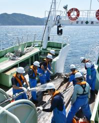 海中から漁網を引き上げる岩手丸の乗組員。6月になってからサケ稚魚の捕獲はなく海の温暖化の影響が強く感じられた=釜石市唐丹町・唐丹湾