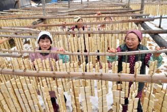 凍り豆腐を天日干しする住民。寒風にさらすと、うま味が増す=13日、一関市萩荘