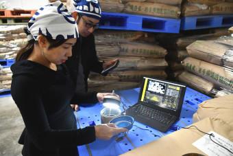 酒米が水を吸う様子を撮影するimaの三浦亜美社長(手前)。職人の勘に頼っていた領域をデータ化して蓄積しAIに学習させる