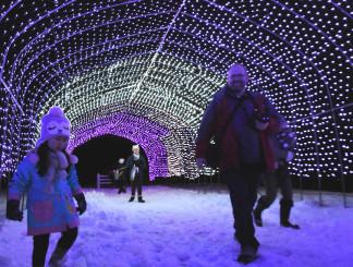幻想的な光が雪景色を照らした天台の湯のイルミネーション