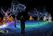 夜空に映える幻想冬景色 軽米でイルミネーション