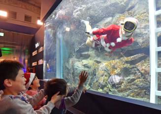 サンタに扮した海女の素潜り実演に見入る子どもたち=24日、久慈市侍浜町・久慈地下水族科学館もぐらんぴあ