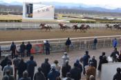 県競馬組合が刑事告発 禁止薬物問題、故意の可能性強いと判断