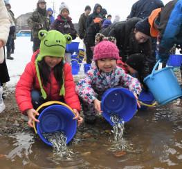 丁寧にバケツを傾け、サケの稚魚を川に放流する子どもたち