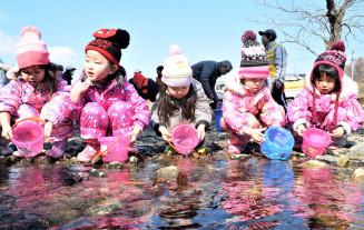 「大きくなって帰ってきてね」。願いを込めサケの稚魚を放流する園児たち
