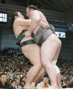 粘り腰の錦木、栃ノ心に屈す 大相撲春場所4日目