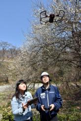 ドローンを飛ばす伊藤政之社長(右)と小泉麗子さん