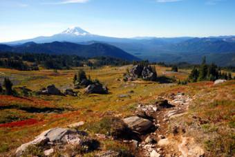 晩秋のトレイルからアダムズ山(左)を望む