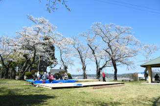 桜まつりが初開催される紫舘公園