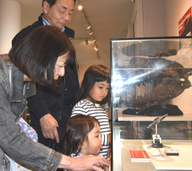 発掘されたティラノサウルス類の歯の化石に見入る来場者=21日、久慈市・久慈琥珀博物館