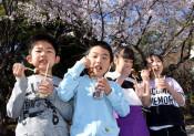 笑顔も咲いた 陸前高田、竹駒小児童がお花見会
