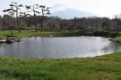 八幡平フラワーランド、拡充 池や芝生を整備