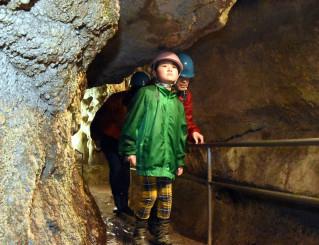 探検気分で滝観洞を進む親子連れ