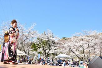 満開の桜に囲まれたステージで民謡を披露する小田代直子さん