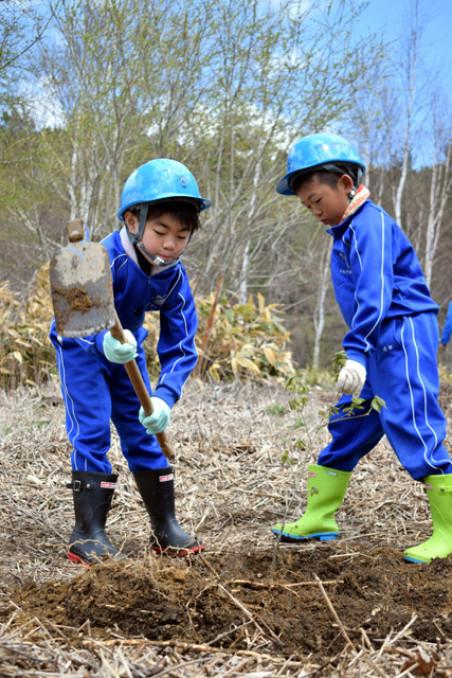 心を込めてミズナラの苗を植える綾織小児童