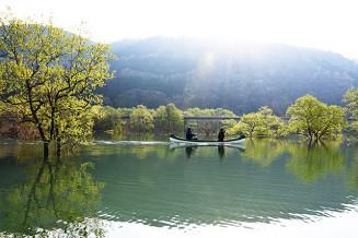 湖面を滑らかに進みながら自然ガイドを楽しめるカヌー