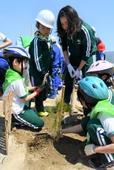 松原の再生を願い苗木を植える児童