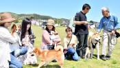 犬猫連れ伸び伸び 盛岡・高松公園で飼い主交流