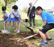 育て苗、小林陵侑選手が縁 母校で寄贈のカシワ植樹