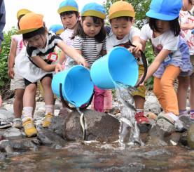 成長を願いながらアユの稚魚を松川に放つ杉の子保育園の園児