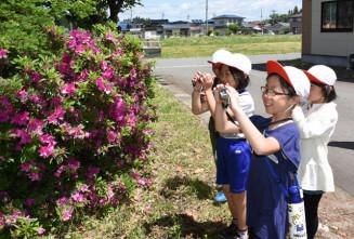 学校周辺の気に入った景観を撮影する児童