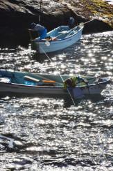 海上で朝日を浴び、たもを手にウニを探す漁業者=4日、宮古市・田老漁港周辺