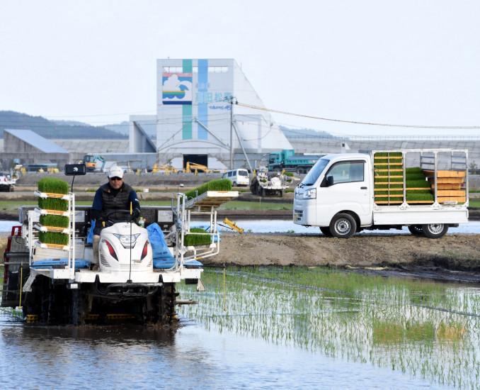 復旧した農地で田植えが行われた陸前高田市高田沖地区の水田