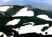 焼石連峰・横岳にハート雪形 奥州・胆沢