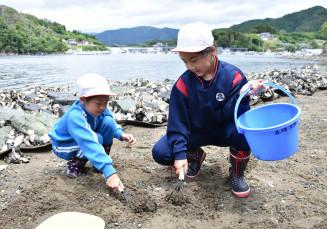 地元の海で潮干狩りを楽しむ赤崎小の児童
