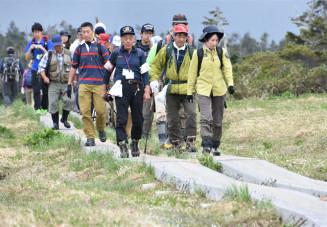 高山植物の盗採の有無などを確認しながら歩を進める参加者