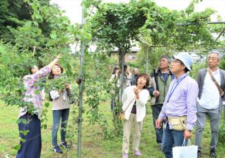 種類豊富な植物や果樹が植えられた庭内を散策する来場者