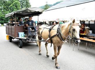 地元産野菜の格安販売や馬車の周遊体験が行われた8周年創業祭