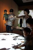 光と音、不思議な世界 盛岡で「魔法の美術館」開幕