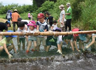 川底に手を伸ばしてイワナを探したり川遊びを楽しむ子どもたち