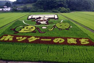 「たまなぼうや」と牛がホッケーを楽しむ様子を描いた浮島地区の田んぼアート