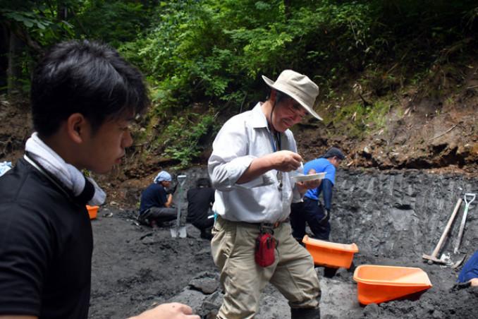 久慈市小久慈町の約9千万年前の地層で集中調査に励む平山廉教授(中央)