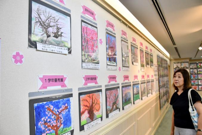 来場者を楽しませる多彩な桜の絵