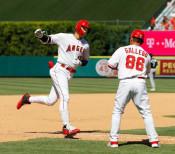 大谷は5打数2安打2打点 3番でフル出場、本塁打も